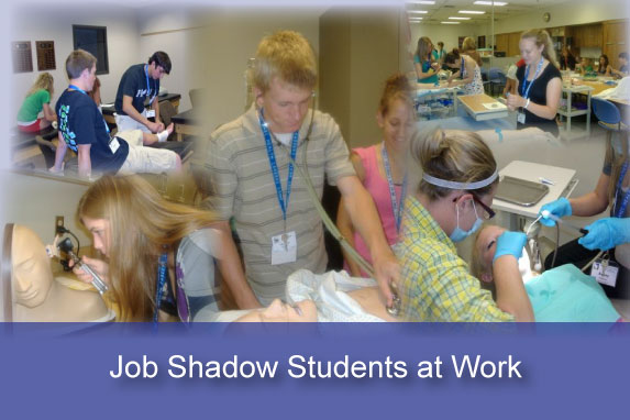 Job Shadow FVHCA